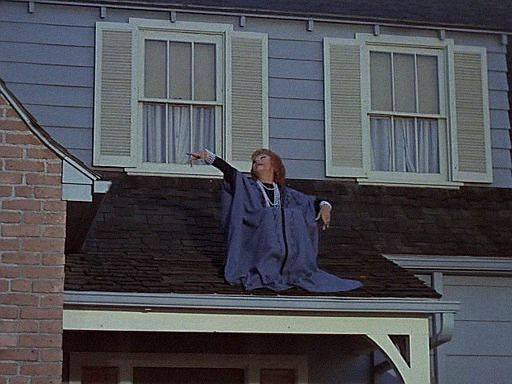endora-on-the-roof