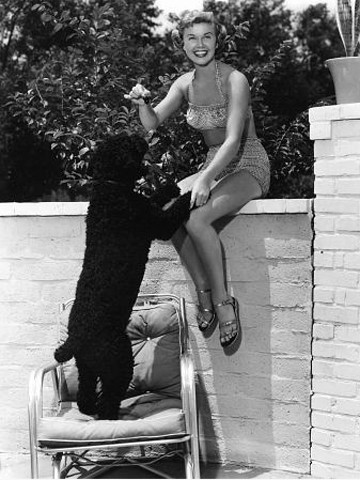 doris-day-with-mrs-mike-dog